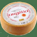 1920 Urgèlia