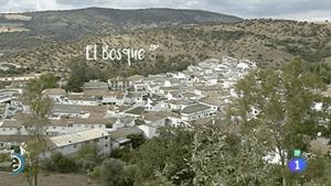 El Bosque, TVE1